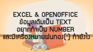 Excel & OpenOffice ข้อมูลเดิมเป็น Text อยากทำเป็น Number และมีเครื่องหมายฝนทอง(') ทำยังไง