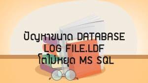 ปัญหาขนาด database log file.ldf โตไม่หยุด MS SQL