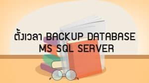 ตั้งเวลา Backup Database MS SQL Server